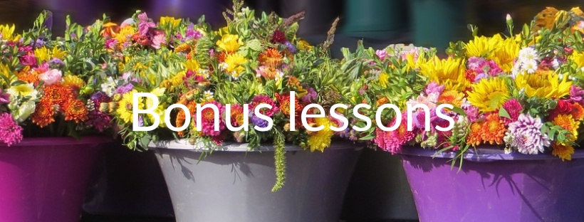 Bonus lessons